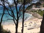 Playa de Cala Crancs,  ideal