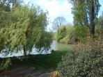 Vue sur notre étang