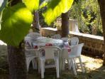 Salons de jardin à l'ombre des tilleuls ...