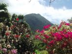 An incredible view of the lush gardens, Nevis Peak and if you turn you have a view of the Sea.