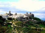 a view of Montescaglioso perched on top of the hill with the wine cantinas along the hill..