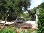 Vue terrasse sud et hamac