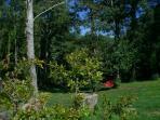 - Plus loin un hamac à l'ombre des arbres