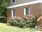 Artist Home/studio  1 block from Chesapeake Bay