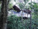 Each private chalet is nestled amongst native fauna