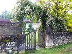 Rose gate into the kitchen garden