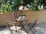 Sitting area under the shady tree