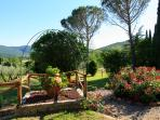 Lovely gardens, decorated with the colours of the strawberries, olive trees and other fruit trees.