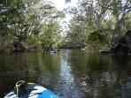 The Glenelg River flows through the property. Suitable for wwimming, canoeing & picnics