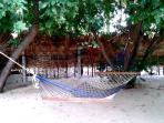 Garden  with Hammock
