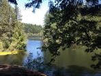 floating on Thetis Lake