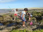 Award winning sandy beaches with rock pools