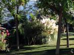 Los jardines de la casa mantienen una atmósfera fresca y relajante, perfecto para unas vacaciones