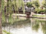 Ullal de l'estany (estanque)