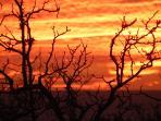 A beautiful sunset!