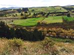 The view from the hill behind River Retreat