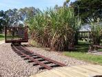 Tyto Wetlands and Bird Sanctuary displays vintage cane trains
