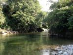 Los rios