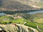 Landscape Douro region
