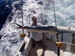 Sportfishing boats available to fish for Marlin, Ono, or Mahi Mahi like this one