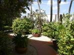 Lush tropical garden.