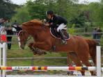 nos chevaux en concours