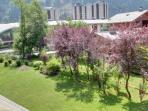 Communal garden of the residence.