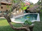 Pool. lounge and garden