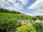 Views to the rear of the property are just as lovely as to the front!