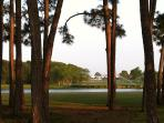 Seascape grounds 300 acres