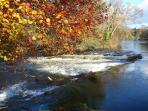 Beautiful River Teifi in Autumn