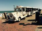 Dotto Train at Seafront Promenade (10 minutes walk from home)
