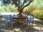 Table and chairs under the olive tree.
