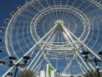 Orlando Eye International Drive.