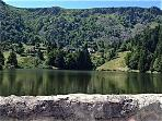 Lac Vert in the Vosges