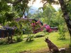 Een deel van de tuin