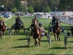 In the summer there is horse racing in Jarnac - flat, sticks and traps.