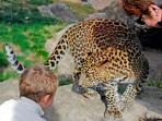 El mejor Zoo de Europa con hábitat natural.