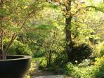 votre jardin en été