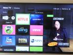 Roku and Netflix TV's in every room.