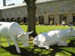 The Royal William yard green with Bistrot Pierre and Wills Secret garden & tea room