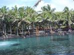 Ahalanui Park, with a unique Jacuzzi temperature lagoon right at the ocean's edge, is one of Kapoho's many treasures