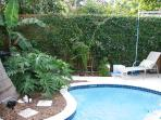 pool with palm and lounge