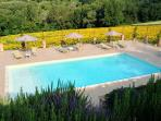 Outdoor share swimming-pool