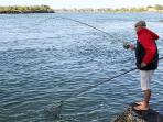 Tweed Heads offers plenty of fishing spots for mulloway, jewfish, bream, snapper, and tailor