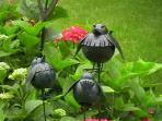 In unserem Garten zu finden ...