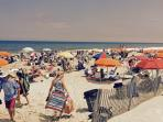 Bethany's beach is very crowded. Photo Taken Parkway Ave., Bethany, 1/2 hr from the previous photo.