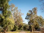 Saleyard Road, take a stroll to the creek.