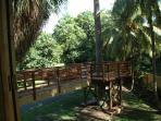 vue de la cabane sur la passerelle et la terrasse autour du palmier royal