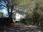 La discesa verso la villa con ampio parcheggio